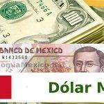 dolar mayo